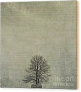 Bare Tree. Vintage-look. Auvergne. France Wood Print