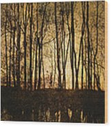 Fall Trees On A Lake Wood Print
