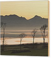 Bare Trees At Coast Wood Print by Image by Peter Ribbeck