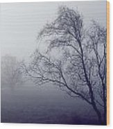 Bare Trees In Thick Fog, Peak District Wood Print