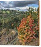 Bargoed Woodland Park Wood Print