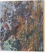 Bark Abstract Wood Print