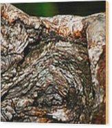 Bark Wood Print by Christopher Gaston