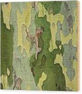 Bark Of A Sycamore Tree Wood Print