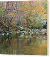 Barkshed Creek Toned Wood Print