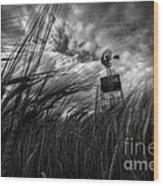 Barley And The Pump Mono Wood Print