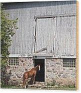 Barn And Horse Wood Print
