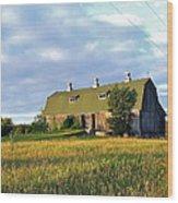 Barn In A Golden Field Wood Print