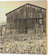 Barn In Brown Wood Print