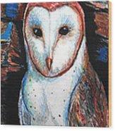 Barn Owl  Wood Print by Jon Baldwin  Art