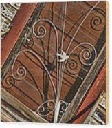 Barn Swallow Gracing Historial Train Station Door Wood Print