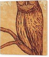 Barred Owl Coffee Painting Wood Print