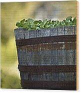 Barrel Of Collards Wood Print
