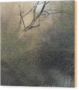 Barren Beauty Wood Print