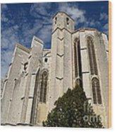 Basilica Of Saint Mary Madalene Back View Wood Print
