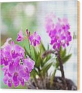 Basket Of Orchids Wood Print