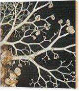 Basket Star Lace Wood Print