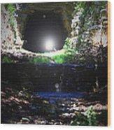 Bat Cave Wood Print