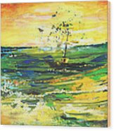 Bathed In Golden Light Wood Print