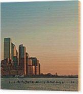 Battery Park City Wood Print