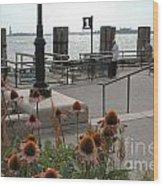 Battery Park Wood Print