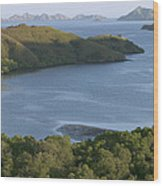 Bay And Outlying Islands Off Rinca Wood Print