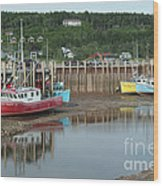 Bay Of Fundy - Low Tide Wood Print