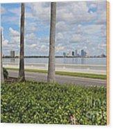 Bayshore Through Palms Wood Print