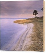 Beach Along Saint Josephs Bay Florida Wood Print