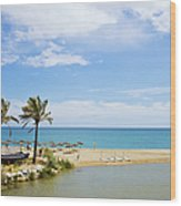 Beach And Sea On Costa Del Sol Wood Print