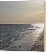 Beach At Dusk Wood Print