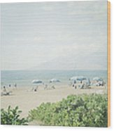 Beach At Wailea  Wood Print