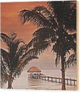 Beach Belize Wood Print