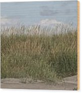 Beach Bluff Wood Print