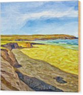 Beach Cliffs South Of San Onofre Wood Print