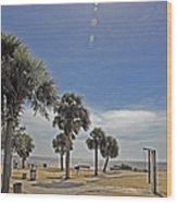 Beach Day After Issac  Wood Print