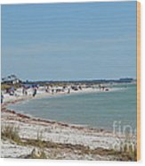 Beach Day On Honeymoon Island Wood Print