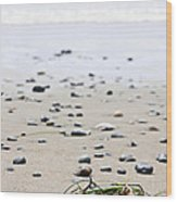 Beach Detail On Pacific Ocean Coast Of Canada Wood Print