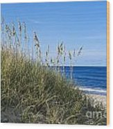 Beach Dunes. Wood Print by John Greim
