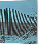 Beach Fence Wood Print