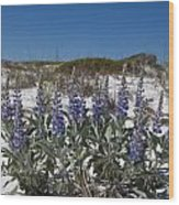 Beach Flora Wood Print
