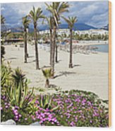 Beach In Puerto Banus Wood Print