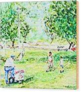 Beach Park  Wood Print