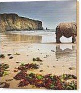 Beach Rhino Wood Print