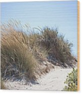 Beach Sand Dunes I Wood Print