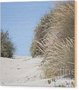 Beach Sand Dunes II Wood Print
