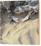 Beach Shore Wood Print