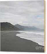 Beach Walked Alone Wood Print