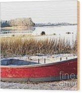 Beached Wood Print