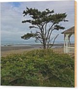 Beachside Gazebo Wood Print